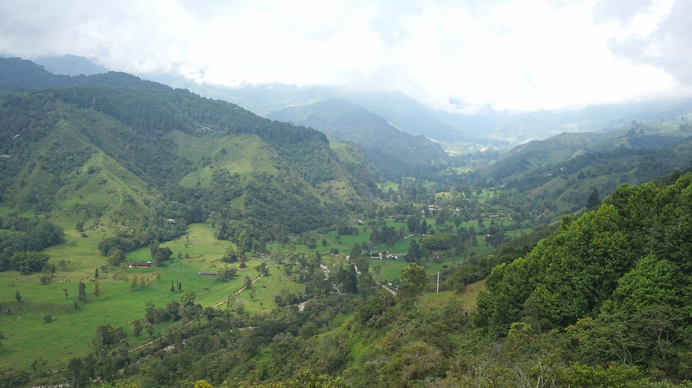 Cocora Valley, Salento, Colombie
