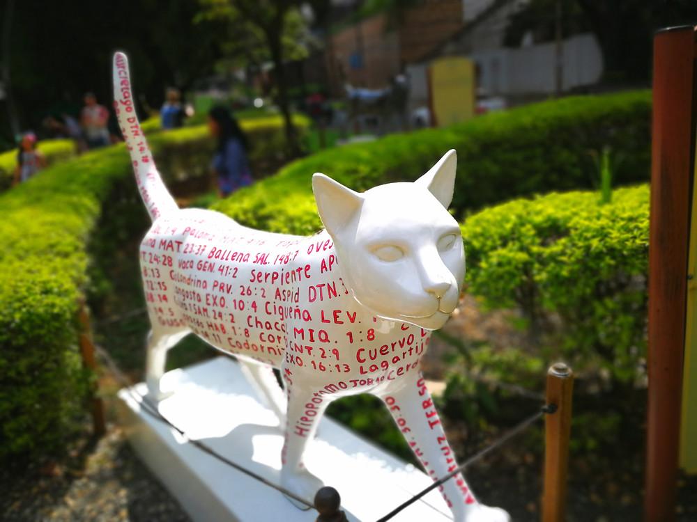 Gatos, Cali, Colombie