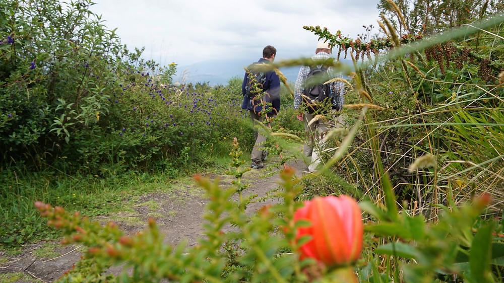 Randonnée à Cotacachi, Equateur