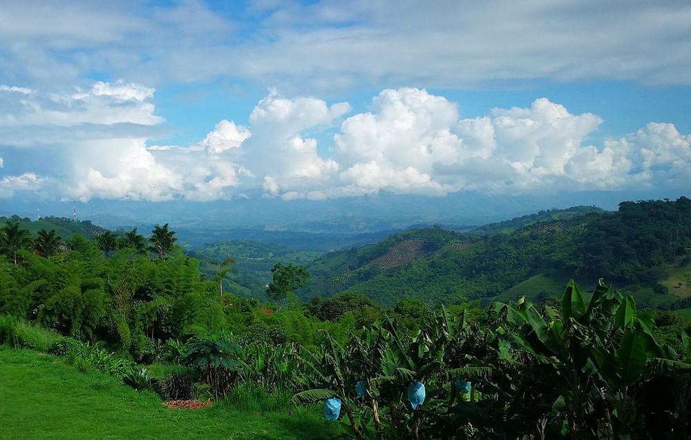 Paysage des Andes, Colombie