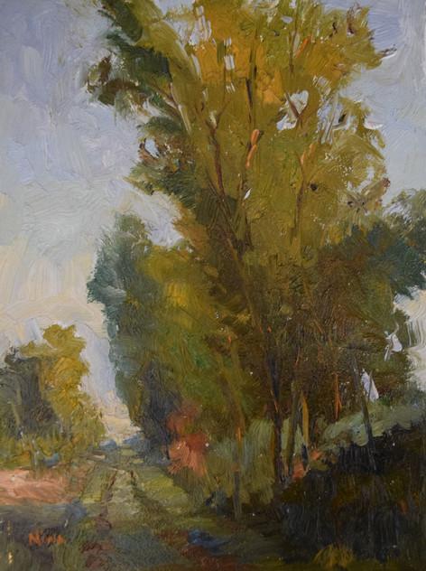 Springtime in the Lane  8x6