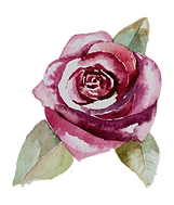 Rose%252525202_edited_edited_edited_edit