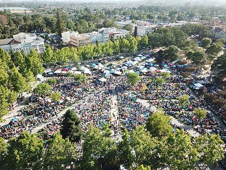 Town Green Aerial.jpg
