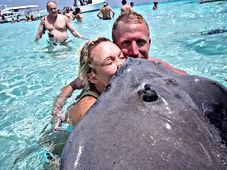 Stingray City Cayman Islands Amvivo