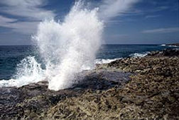 Blow Holes Cayman Islands Amvivo