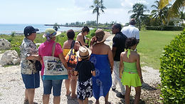 Full-day Tours Cayman Isolands Amvivo