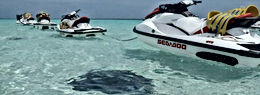 Stingray City Jetski Tour Cayman Islands Amvivo