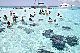 Excursions Cayman Islands Amvivo