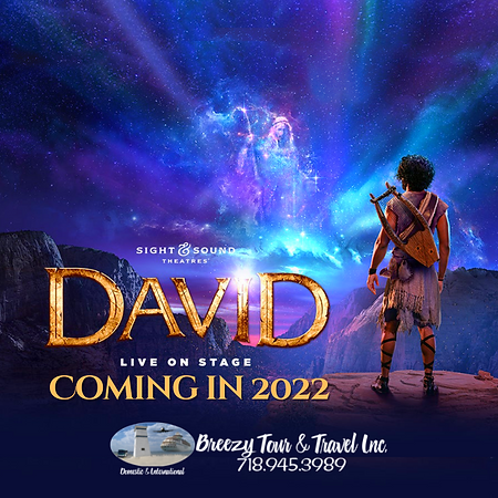 BTT DAVID 2022.png