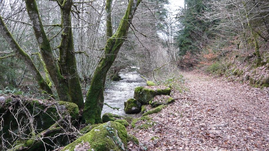 Rivière du Tournesac