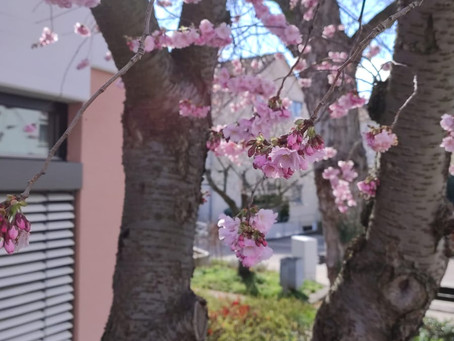 Frühling vor'm Dorfkind