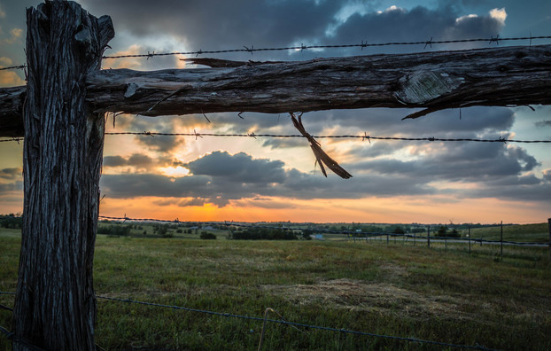 Fence with the Sunset