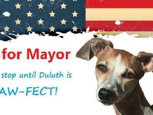 Dog Parks and Politics