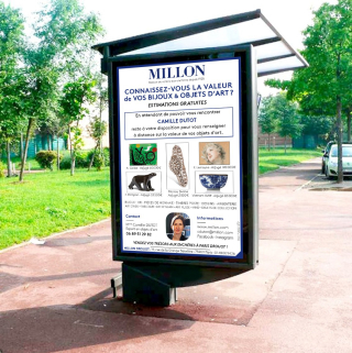 Millon Yvelines expertise