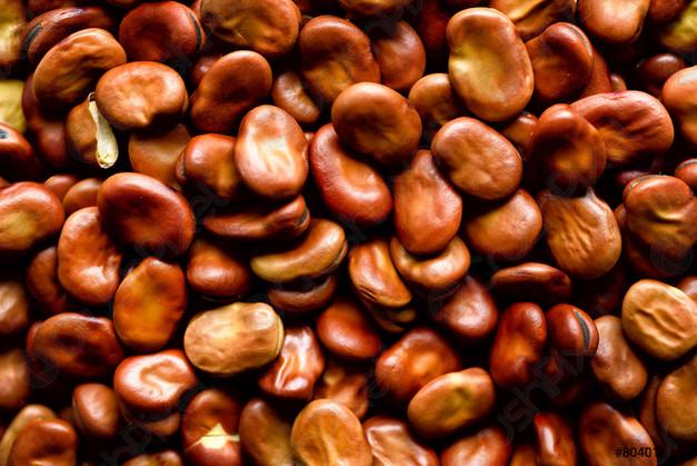 Big Broad Beans