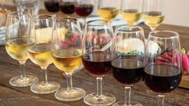 Wine tasting lineup in Lyon