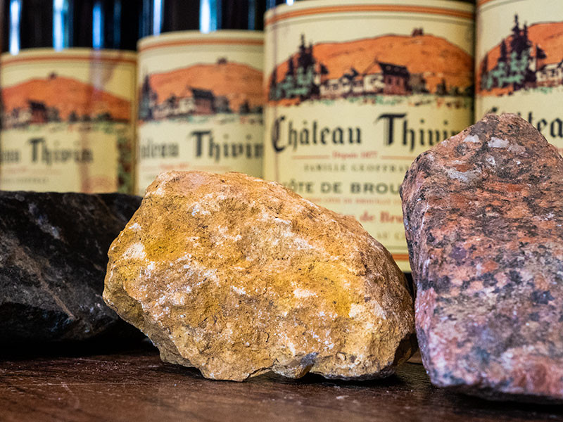 wine bottles and terroir in Beaujolais tour