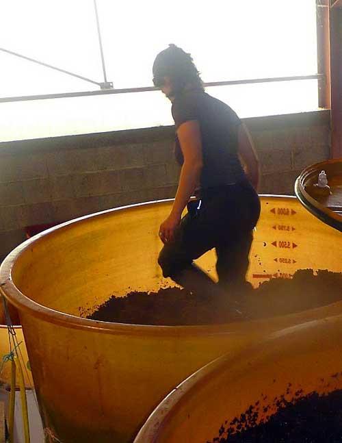 Grape Stomping Christelle Betton Lyon Wine Tastings