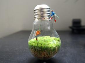 [Ep-11] 苔燈泡-Bulb Capsule-by-植屋
