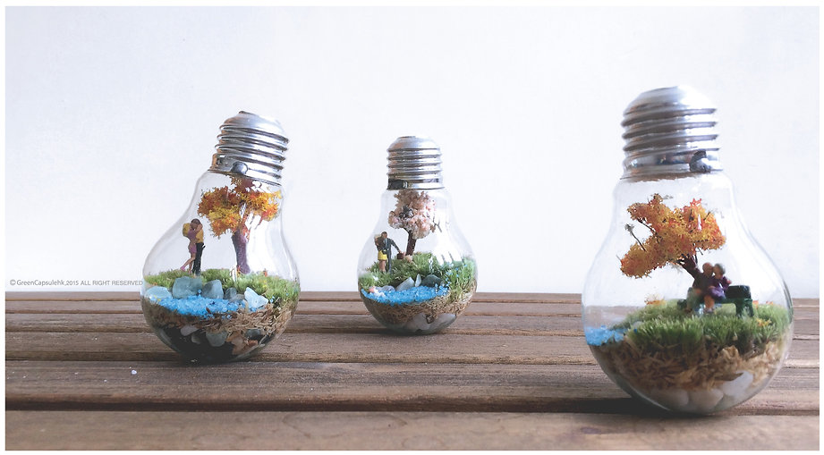 植屋苔燈泡工作坊 workshop Moss in light bulb