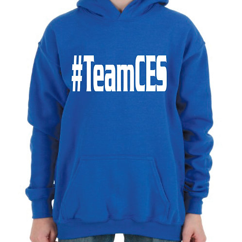 CES Gildan hoodie Design 3