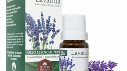 Óleo Essencial Lavanda Francesa 10 ml - Lavandula angustifolia