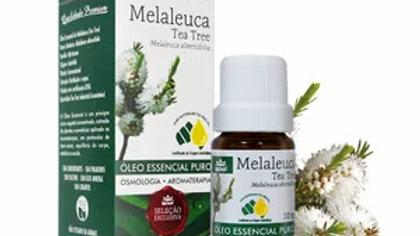 Óleo Essencial Melaleuca 10 ml - Melaleuca alternifolia