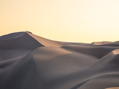 Con i condor sulle dune