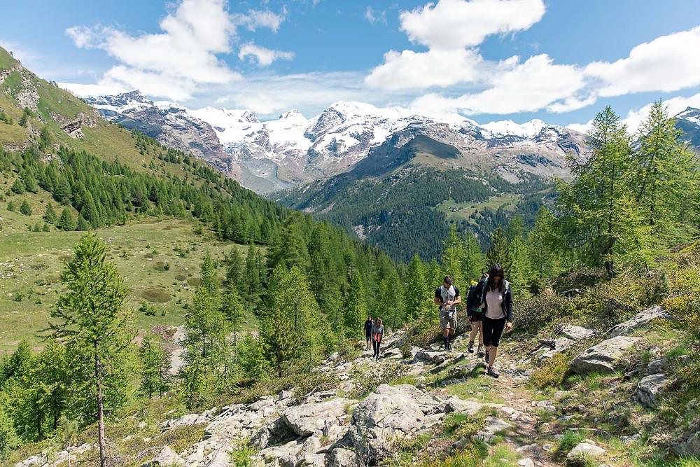 Escursione di gruppo in Valle d'Aosta nel Monte Rosa