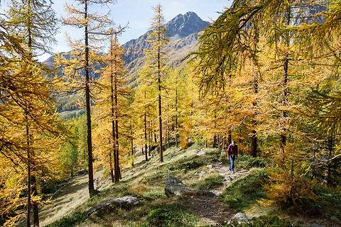 Val d'Ayas - Valle d'Aosta