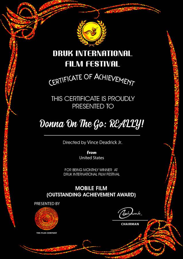 DRUK Donna On The Go REALLY! copy 2.jpg