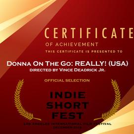 Indie Short Fest.JPG