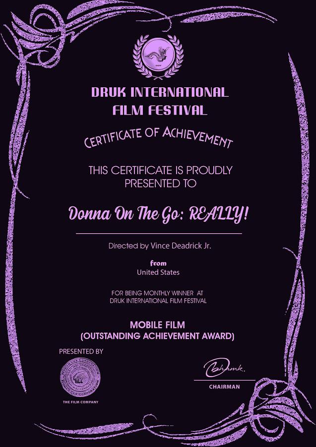 DRUK Donna On The Go REALLY! copy.jpg