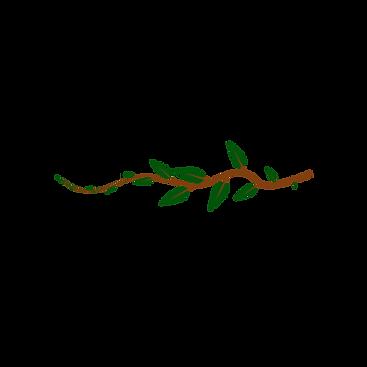 Vector Branch