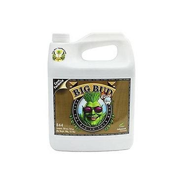 Advanced Nutrients - Big Bud Coco 250 ml