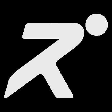 R Symbol grey.png