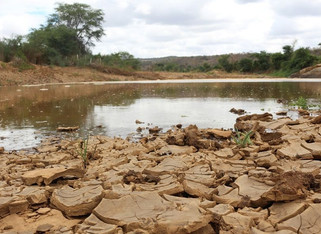 Monitor de Secas indica aumento de 61,7% da área com seca na Paraíba durante o mês de setembro
