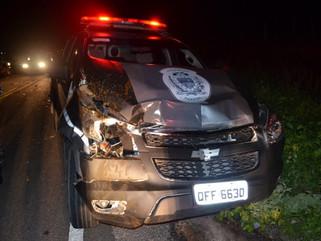 Animal provoca acidente com viatura da PM na PB-400