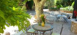 Gîtes en provence, Gard.
