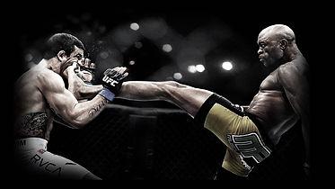 Смашанные единоборства(MMA) г.Королев