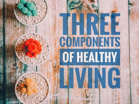 Three Components of a Healthy Living