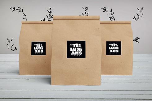 Paper-Bag-3.jpg