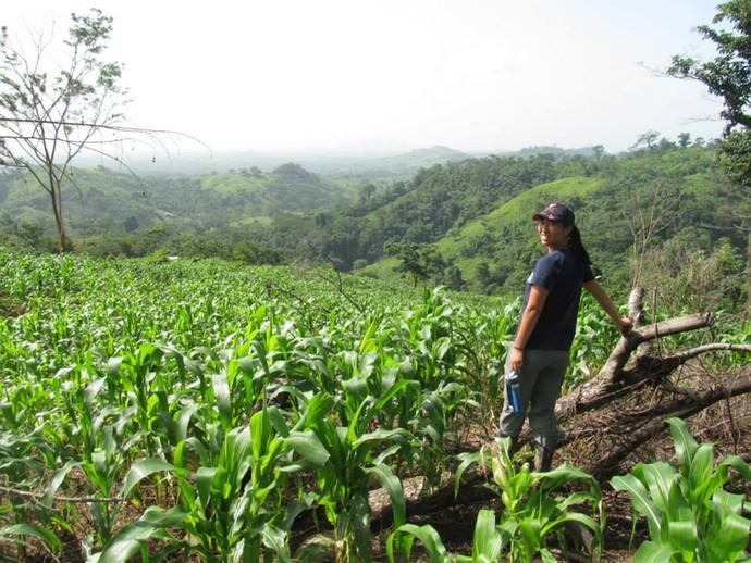 Nicaragua_2013_angela-in-field