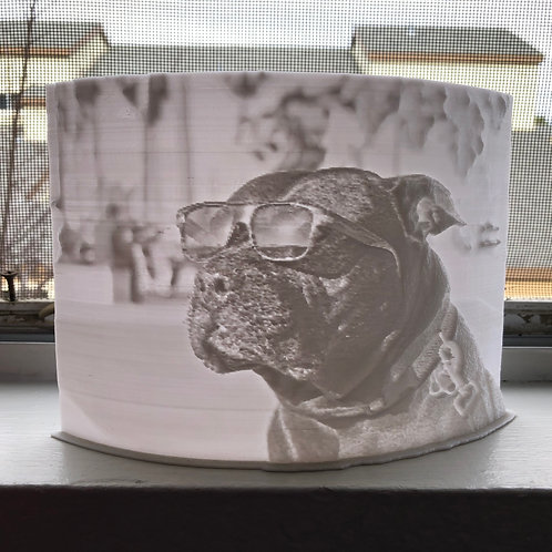 Personalized 3D Picture