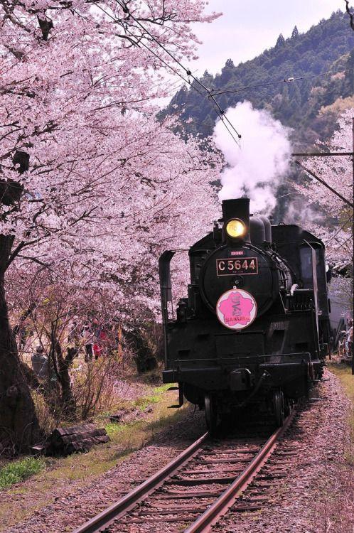 pink train.jpg