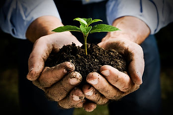 bigstock_Farmer_hand_holding_a_fresh_yo_