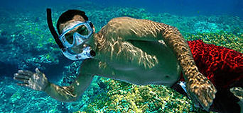 private-day-charter-cruise-diver.jpg