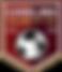 Carolina Velocity Logo