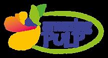 AP_Logo_transparent.png