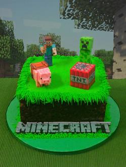 Minecraft Mini Cake.jpg